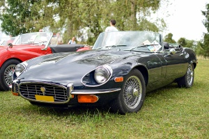 Jaguar type E Série 3 Roadster - Automania 2017, Edling les Anzeling, Hara du Moulin